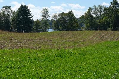 Battis Farm fields running along the lake.