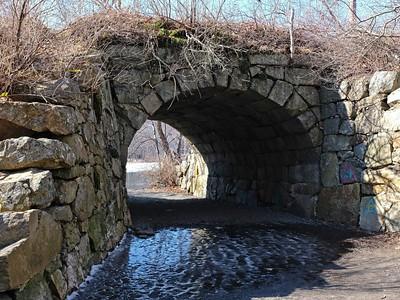 Hatch Trail to Stevens Pond.