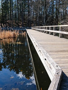 The boardwalk on the All Persons Trail.