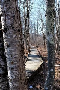 Along Laird-Norton Trail.
