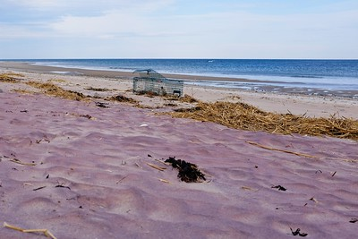 Reddish colored sand  is from garnet minerals in the sand.