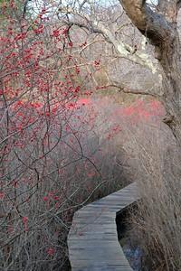 Hellcat Wildlife Observation Area.