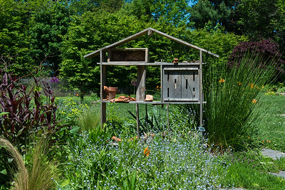 Herb and wildflower garden.