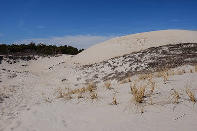 Hiking trails over sand dunes at Crane Beach - Ipswich, MA.