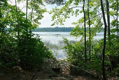 Another peek at Turkey Pond.