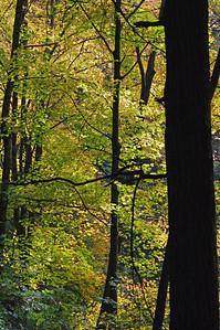 Hocking Hills State Park