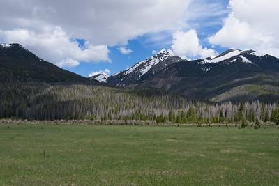 Wide open meadows.