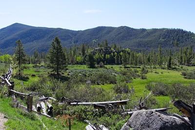 Wonderful meadows.