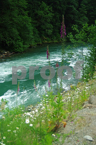 Skagit River, North Cascades National Park