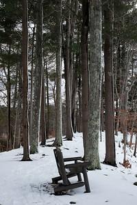 Along the North Esker Trail.