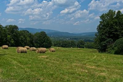 Farmers field.