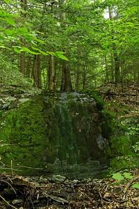 Moss falls...