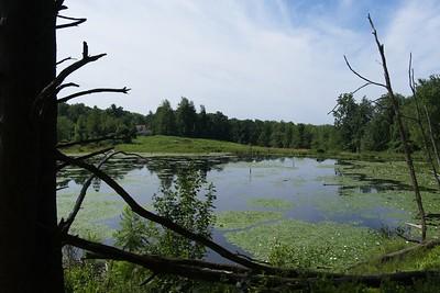 Otter Pond.