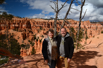 Hoodoos in the sunshine. . .