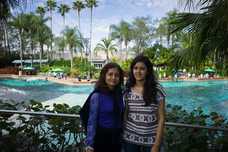 @the dolphin pool