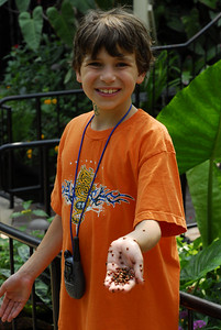 Alex with lady bugs