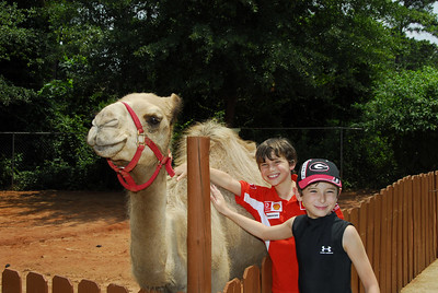 Alex and Larry with a camel