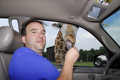Zev and the Giraffe