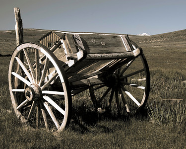 bodie cart
