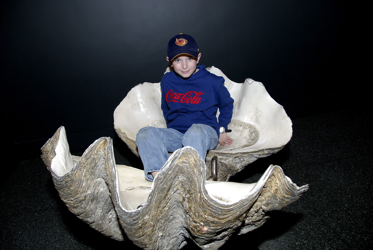 Larry in an oyster shell