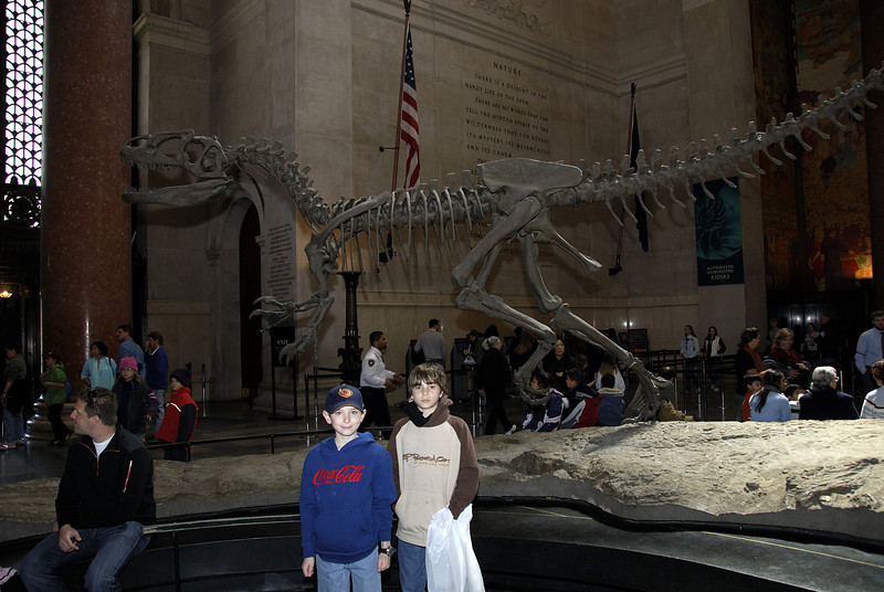 Dinosaur at American Museum of Natural History