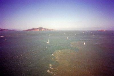 Alctraz Island