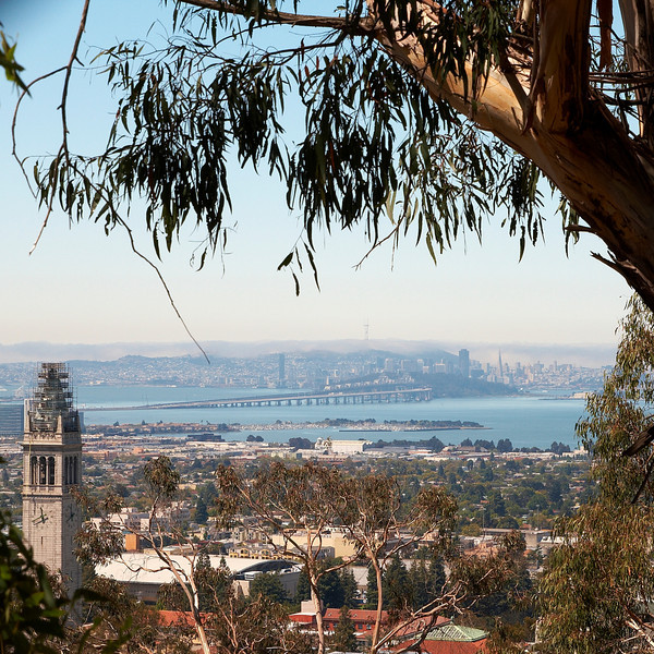 View from Lawrence Berkeley National Laboratory down to the Bay bridge and San Francisco.