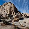 Joshua Tree National Park.
