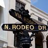 N Rodeo Drive