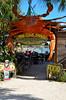 The Crab Shack Restaurant, Tybee Island, GA
