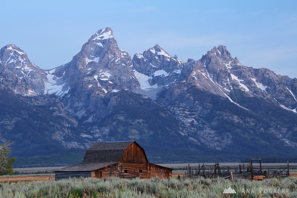 Grand Tetons with a barn from Mormon Row before sunrise