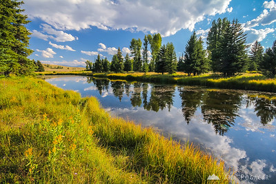 Picturesque afternoon in the Grand Teton NP from Schwabacher Landing