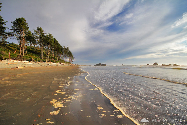 Ruby Beach in the late afternoon