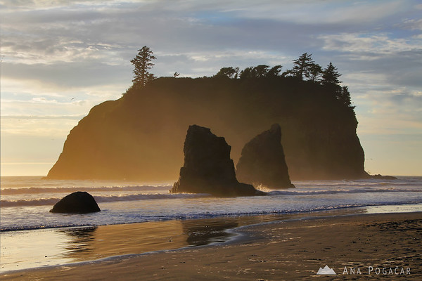 Ruby Beach seastacks