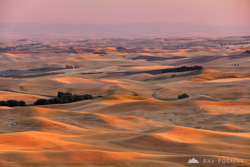 The Palouse from Steptoe Butte around sunset