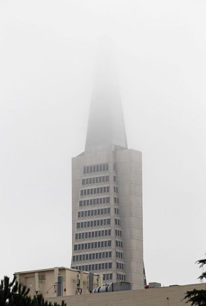 USA 2011 - San Francisco - Transamerica Pyramid