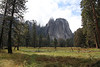 USA 2011 - Yosemite National Park