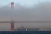 USA 2011 - San Francisco Fleet Week - Ship Parade<br /> Golden Gate Bridge - USS Carl Vinson (CVN 70)