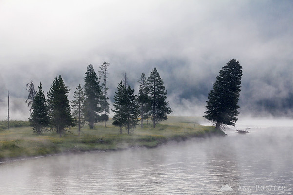 Morning mists, Yellowstone