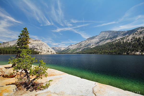 On the shore of Tenaya Lake