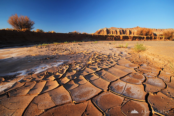 Dry riverbed, Capitol Reef NP