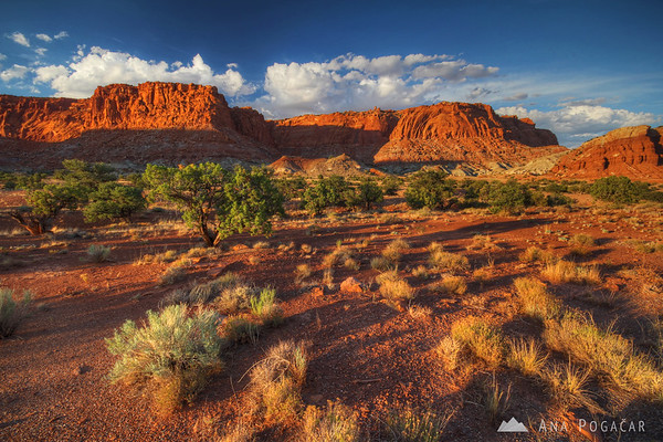 Capitol Reef NP in late afternoon light