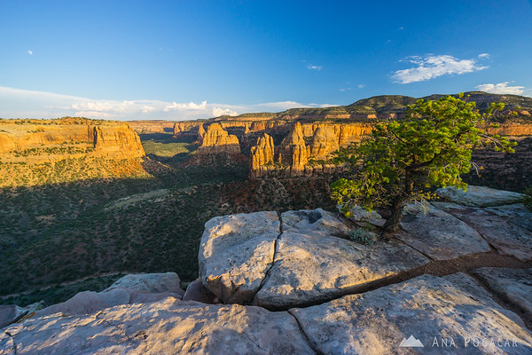 Colorado National Monument in late afternoon