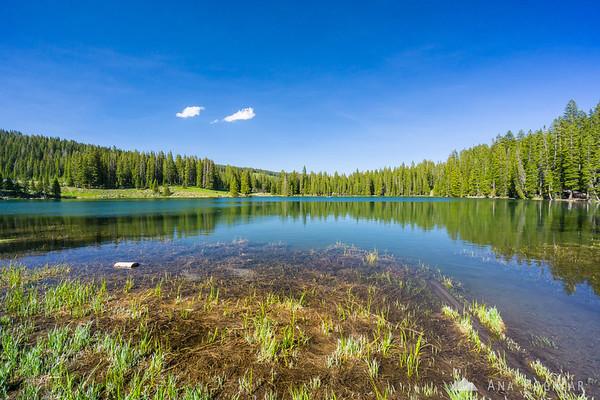 Island Lake, Grand Mesa