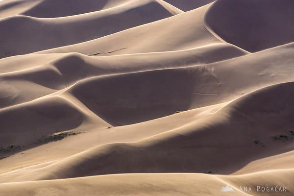 Dunes of Great Sand Dunes NP, Colorado