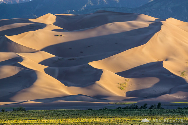 Early morning in the Great Sand Dunes NP, Colorado