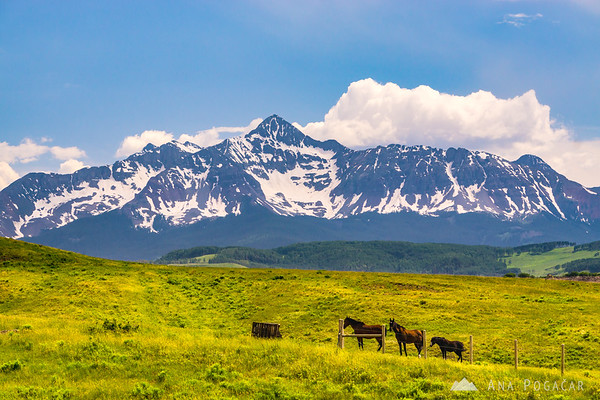 Views of Mt. Wilson from Last Dollar Road, San Juan Mountains, Colorado