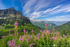 Glorious day in the Glacier NP as seen from the Going to the Sun Road