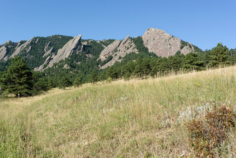 The Flatirons from Chautauqua meadow.