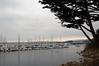 Monterey harbor, California, 29 September 2006.